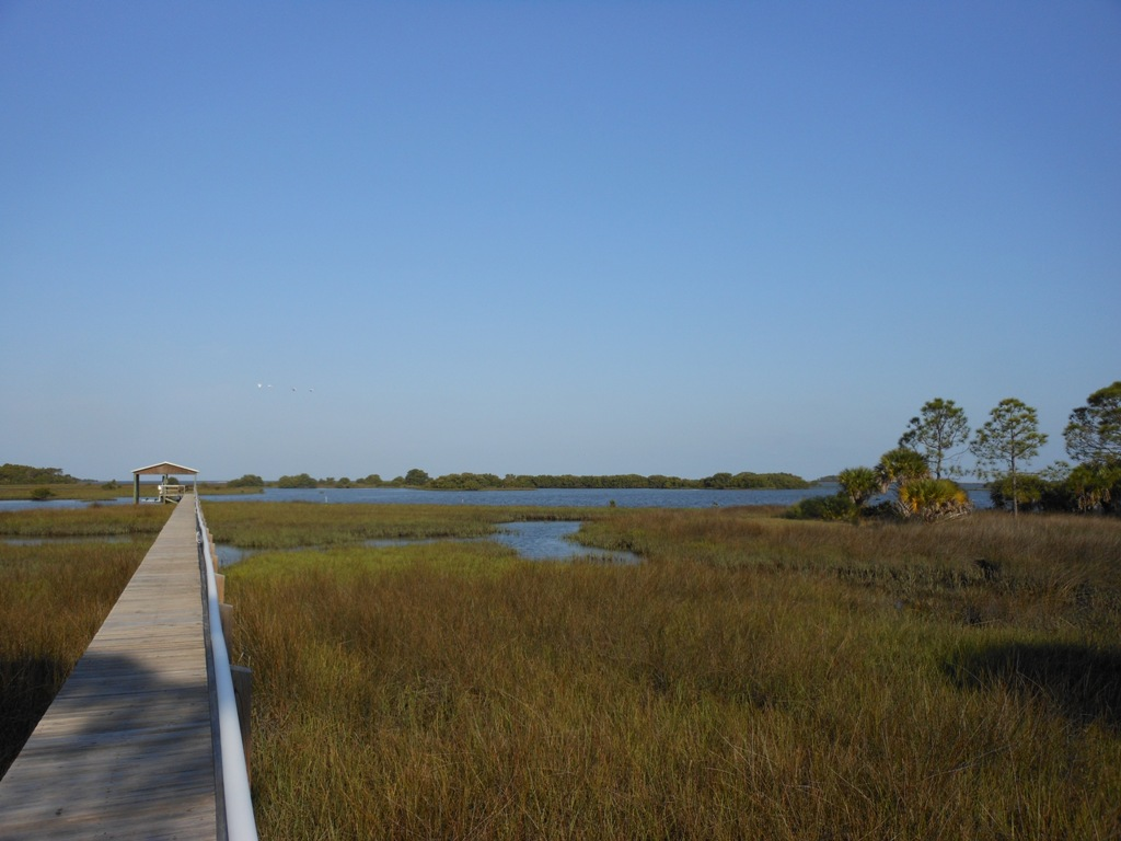 Quiet Seclusion at Cedar Key Summit